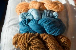 Coreopsis, indigo and onion skin on Merino wool